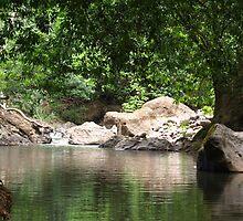 Poza de Rio, Puriscal, Costa Rica by Guy Tschiderer