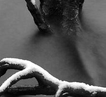 Cold Snap by robinjgraham