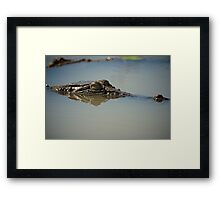 The Danger Below  Framed Print