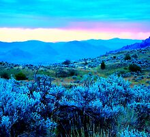 sagebrush blue dawn by TerrillWelch