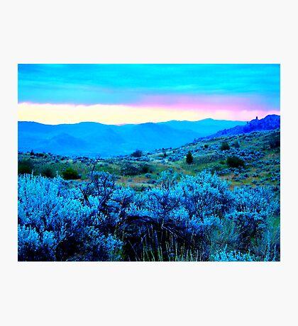 sagebrush blue dawn Photographic Print