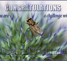 Challenge banner entry by inkedsandra
