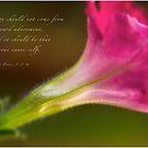Petunia Profile by JulieLegg