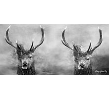 Stag Party, One For The Road And The Morning After Photographic Print