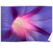 Petunia Purple Poster
