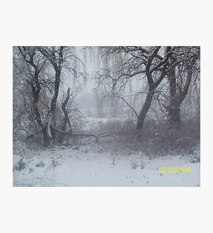 Snow Scene 2 Photographic Print