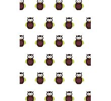 Brown & Green Owl (Pattern) Photographic Print
