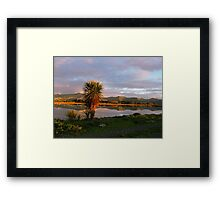 Reflections in a Pond - on a Journey in Christchurch - New Zealand Framed Print