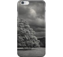 The old oak and the crow iPhone Case/Skin