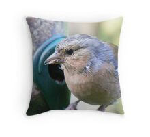 Mr Chaffinch - is this my best side?! Throw Pillow