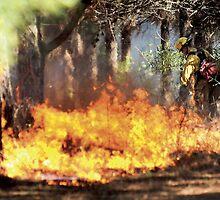 Field Fire by Brett Clark