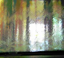 car wash  by Robyn Wilkey