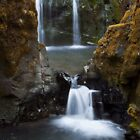Autumn Falls by Lauren Andalora