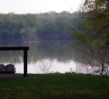 Swing at the Lake by quantum0d0