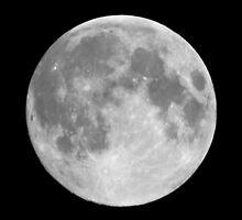 August Full Moon by Savannah Gibbs
