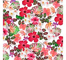 Girly modern pink white trendy tropical flowers  Photographic Print