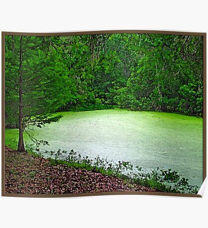Algae Green Pond Poster