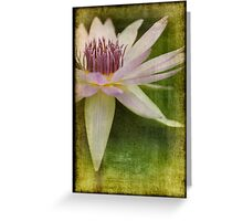 Pink Water Lily Texture Greeting Card