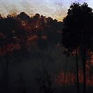 Raging Bush Fire by Eve Parry