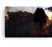 Raging Bush Fire Canvas Print