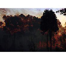 Raging Bush Fire Photographic Print