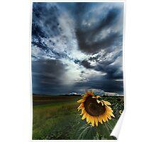 Summer Storm, Allora, Queensland Poster