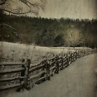 Along the Split Rail Fence by Christine Annas