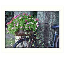 Flowers In A Basket Art Print