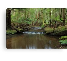 Tranquil Stream Canvas Print
