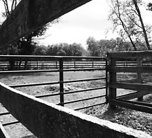 Horse enclosure by DearMsWildOne