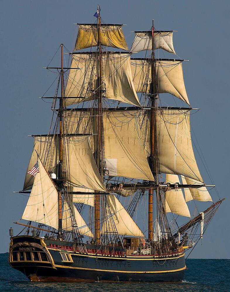 HMS  Bounty by Bill Coughlin
