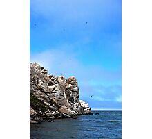 Morro Rock - Morro Bay, CA Photographic Print
