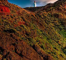 Cape Schanck Lighthouse by Day by Jason Green