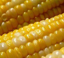 Corny by Marcia Rubin