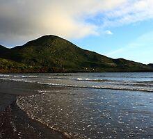 South Coast Of Ireland by aidan  moran