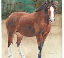 Clydesdale watercolor by Mike Theuer