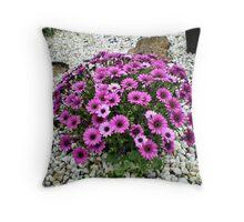 Purple Patch - in neighbour's garden Throw Pillow