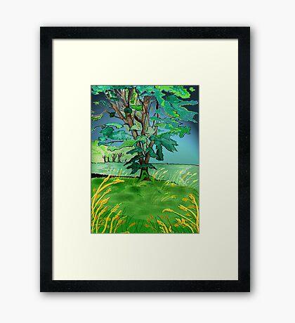 Tree and corn. Framed Print