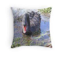 Black swan on lake wendouree Throw Pillow