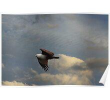 Scavenger Kite Poster