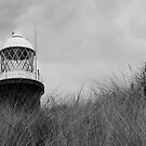 Spurn Point Lighthouse, East Yorkshire by Neil Clarke