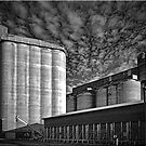 Sunlit Silos by Kym Howard