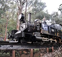 Puffing Billy on track by kathiemt