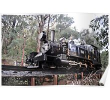Puffing Billy on track Poster