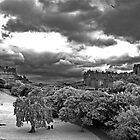 Edinburgh IR by Ahmed Darwish