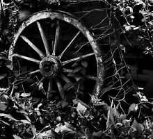 Derelict by Paul Hickson