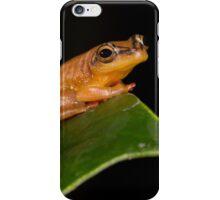 Golden Frog iPhone Case/Skin