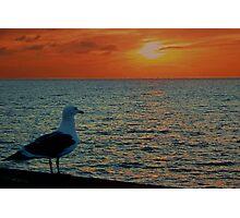Sharing My Sunset Photographic Print