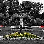 The Colours of the Gardens by Ryan Davison Crisp