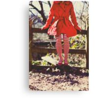 Stripy socks  Canvas Print
